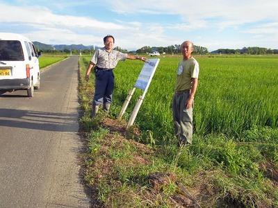 台風一過農道の看板
