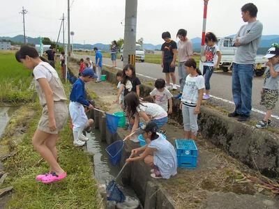 魚のゆりかご水田