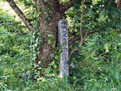 卒業記念植樹の碑2
