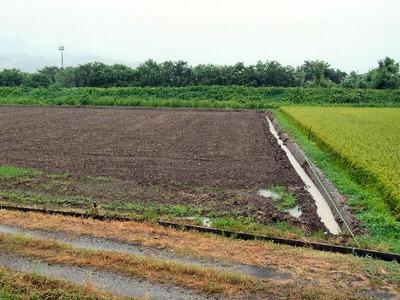 大雨後の農地