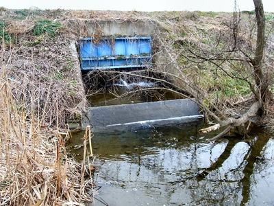 霞堤取水口天野川側