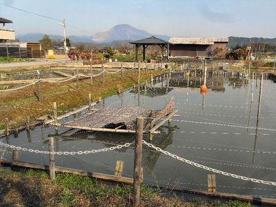 長沢の里池