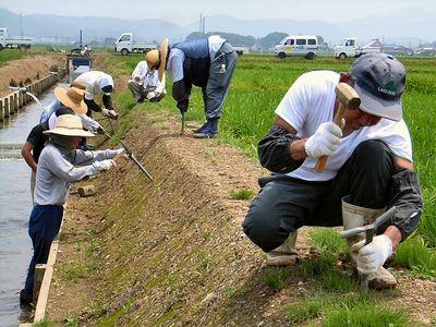 ティフブレア植栽準備2日目