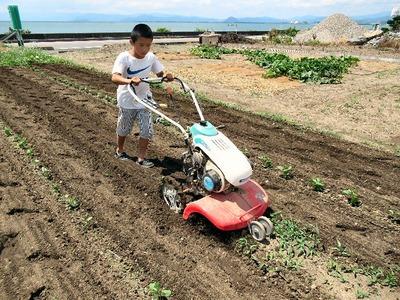 孫と耕運機
