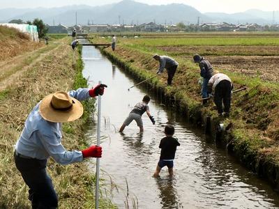 農業排水路の泥上げ