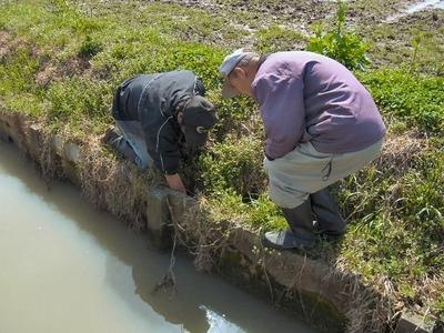 水路溝畔の問題