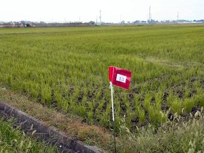 土壌改良剤散布準備
