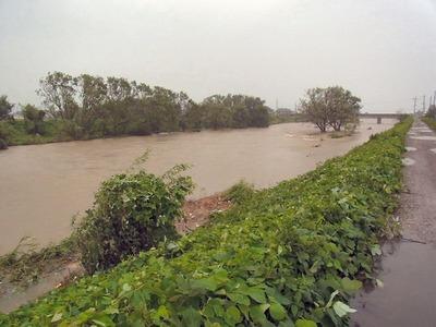増水している天野川