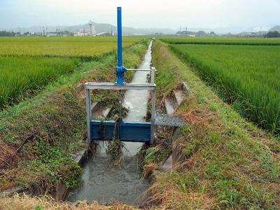 大雨後の水路