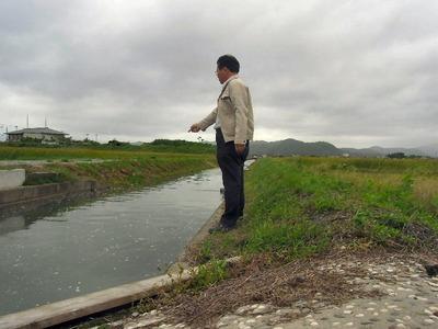 大雨後の寺川