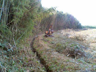 竹やぶの被害