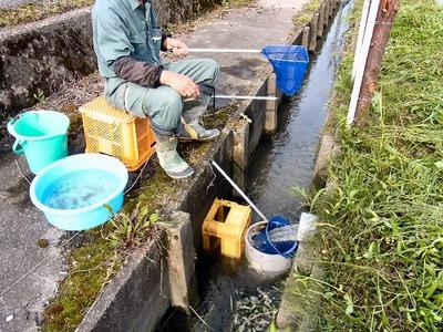 魚の回収方法