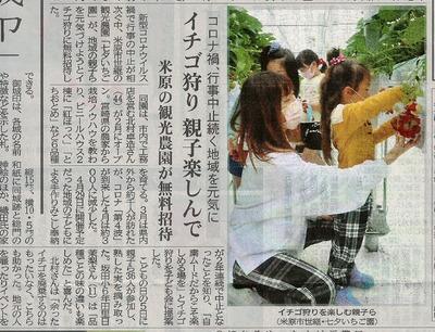京都新聞s
