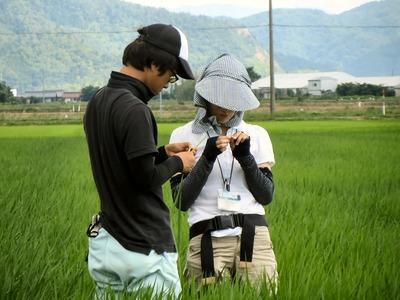 滋賀県湖北農産普及課