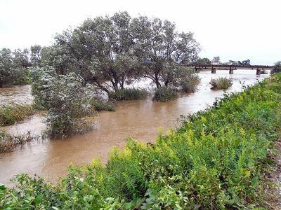 台風と天野川