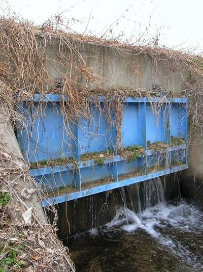 霞堤取水口の堰