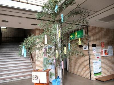 山東庁舎の笹飾り