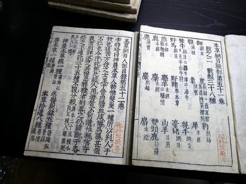 a19a-204