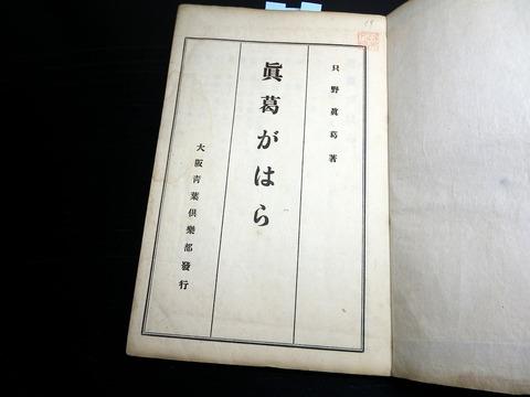 z19b-140