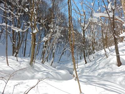 八丁川源流の雪原