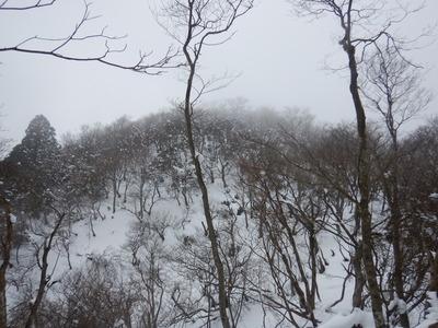北雲取山ピーク