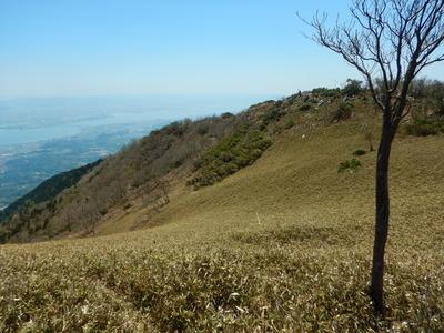 笹原の稜線