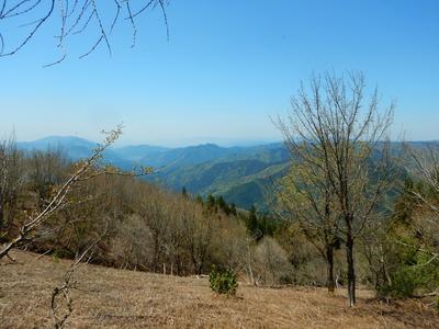 権現山から京都方面