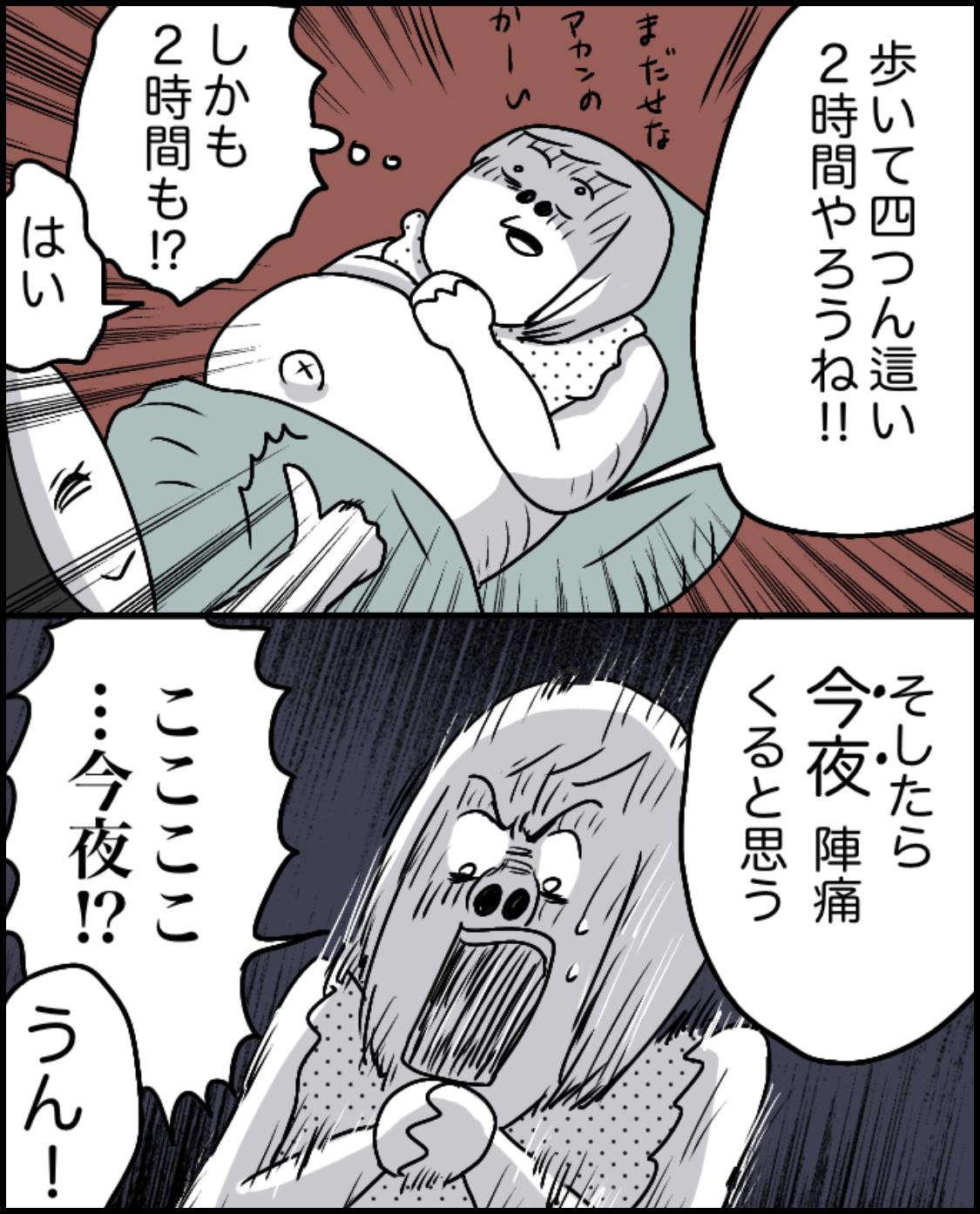 IMG_7774
