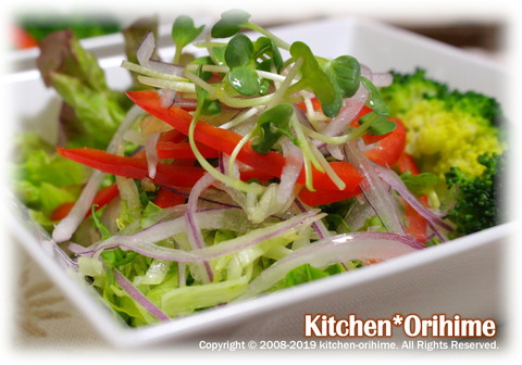 野菜サラダ-アップ