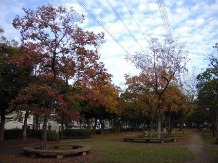 DSCN1463-色づく木々