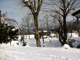 雪景色1−拡大
