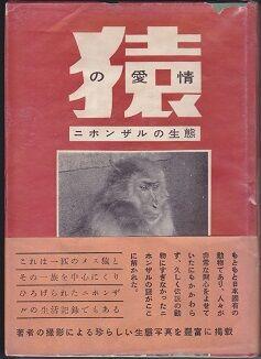 猿の愛情の本の表紙