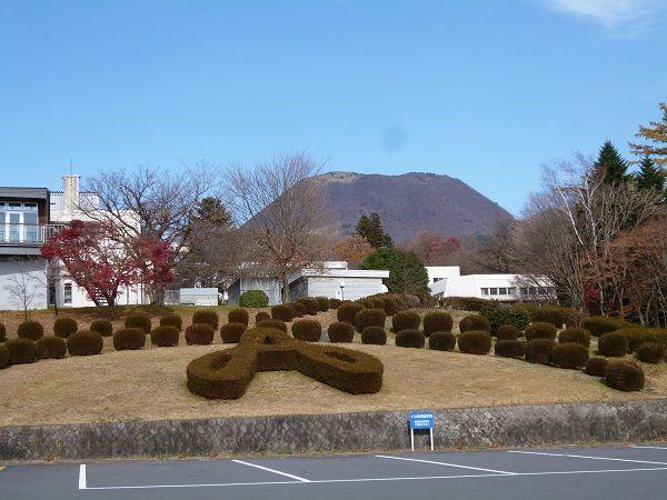 群馬7 ホテルの芝生