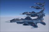 航空自衛隊支援戦闘機F-2