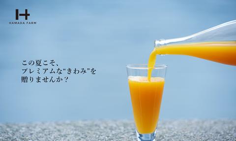 きわみジュース夏バナー