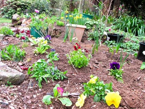 春花壇の準備