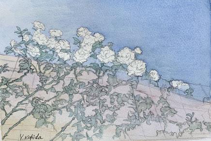 39-14「花咲く」西田由香里