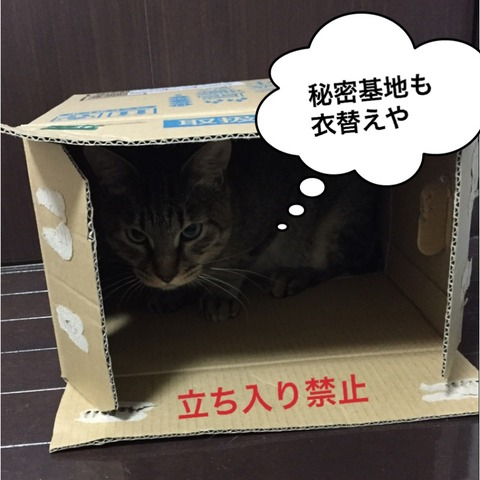 IMG_4885[1]