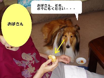 おばさん3