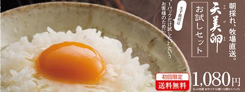 otameshi_L.jpg