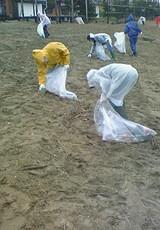 寺泊海岸の清掃に行って来ました