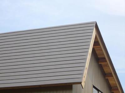 新潟県三条市の屋根外壁塗装リフォーム専門店《遠藤組》 チヨダカラーNEX銀嶺を使った屋根