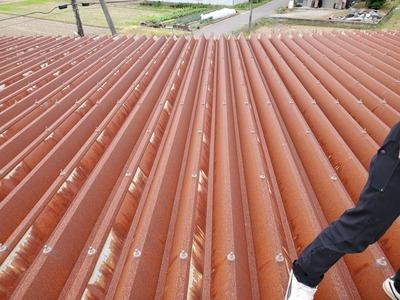 新潟県三条市の屋根外壁塗装リフォーム専門店『遠藤組』折板屋根カバー工事を提案