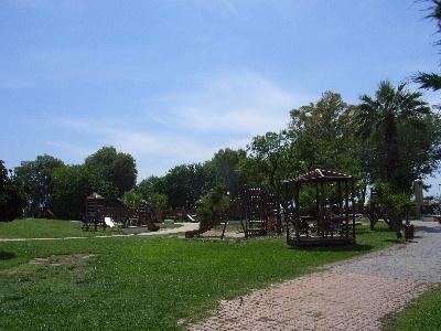 alimospark2