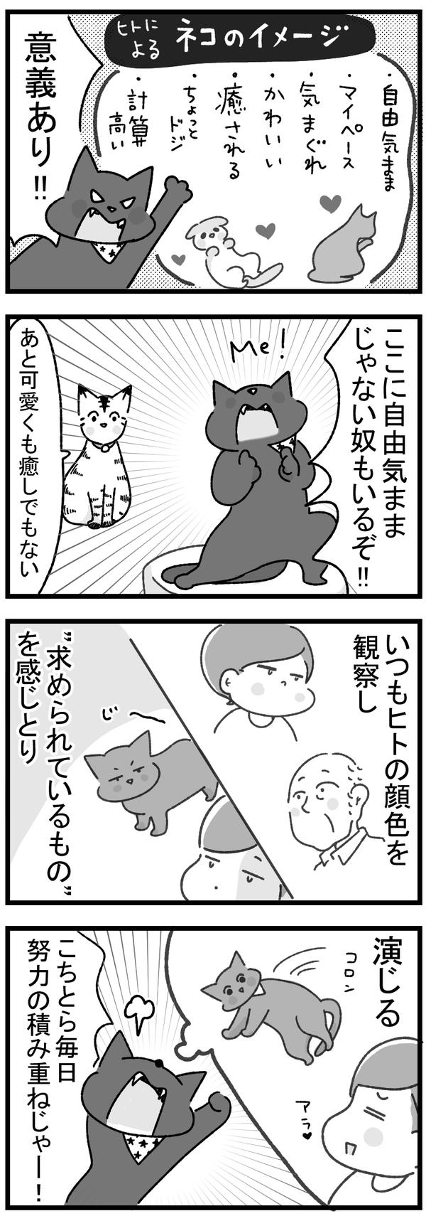 ネコのイメージに一言1