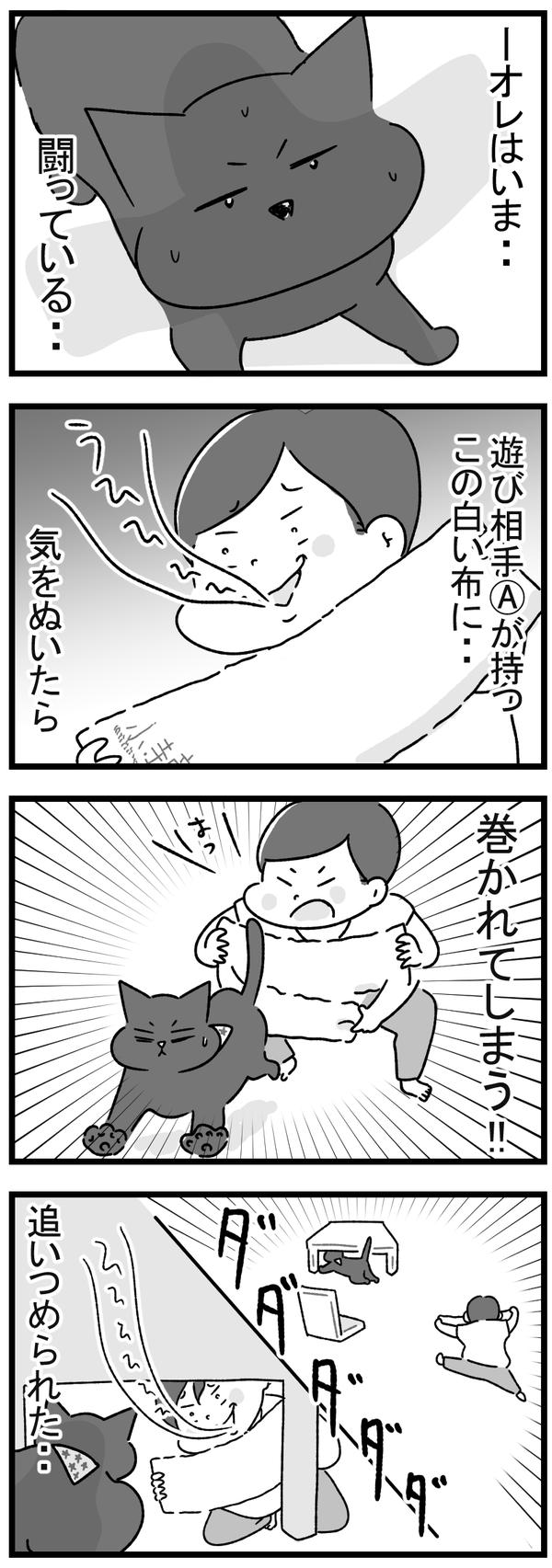 黒猫狩り1