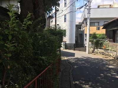 17/07/31ラーメン二郎中山駅前店16