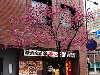 18/03/07ラーメン二郎ひばりヶ丘駅前店 01