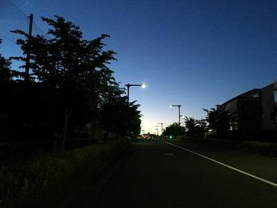 IMG_1189-1
