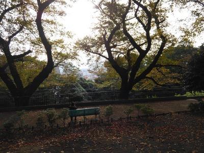 15/11/01アンロード(光陽商事)12